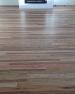 Spotted Gum floor.