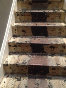 100 year old stairs.
